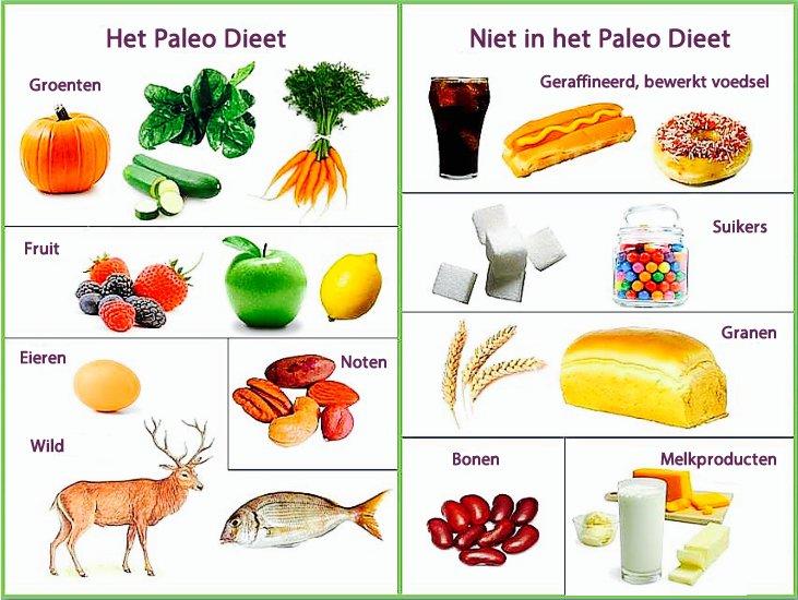 voeding en dieet kuleuven
