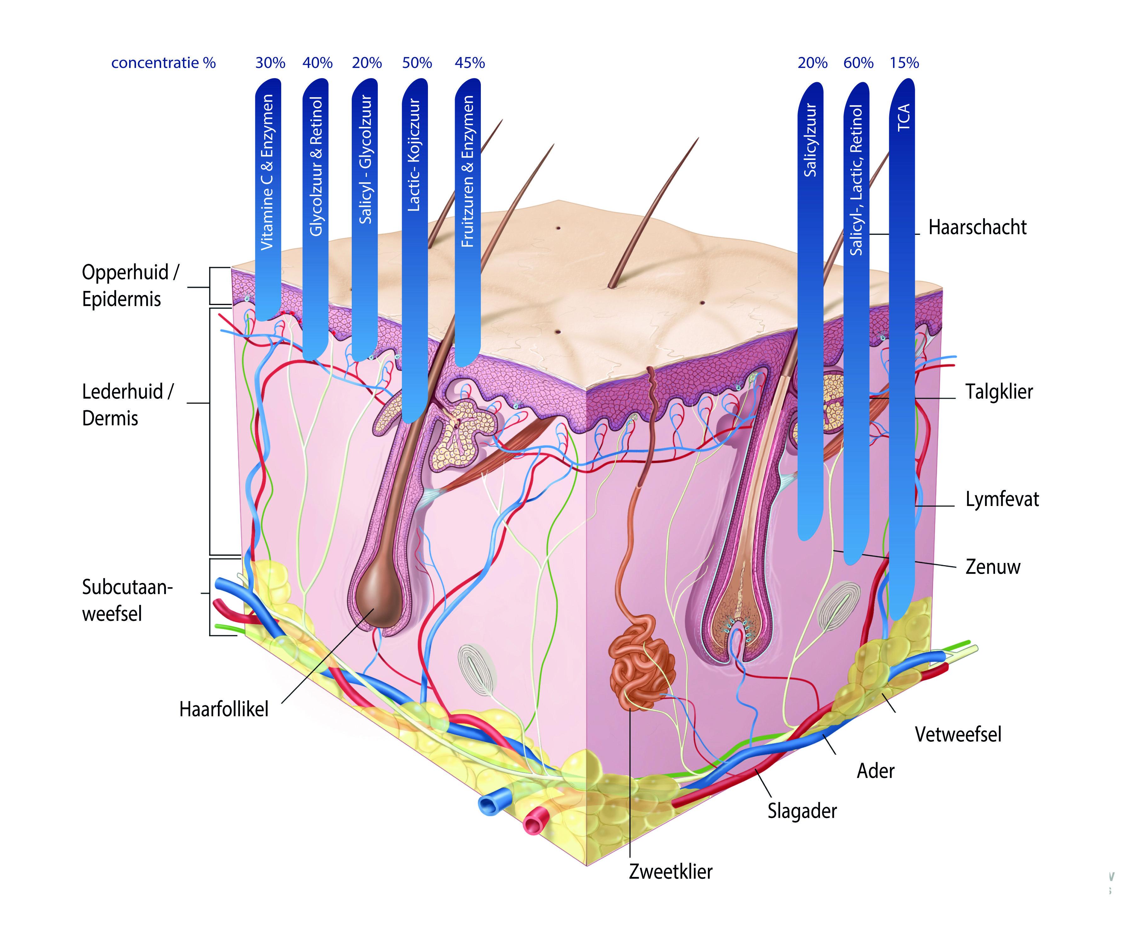 Exfoliëren om de huidconditie te verbeteren