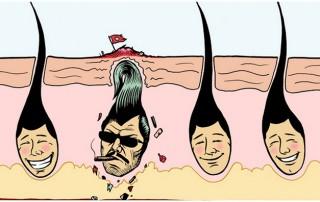 Ingegroeide haren en scheerirritatie in baardstreek voorkomen